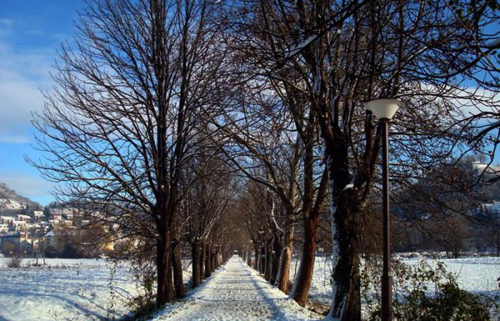 Krapinske Toplice aleja zimi